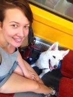 dans le train Porto-Aveiro