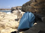 la tente bien accrochée à la falaise